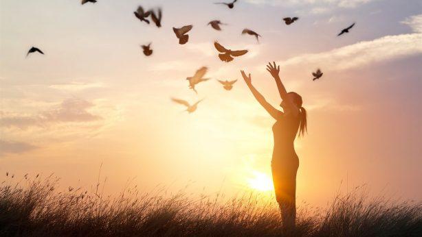 Reunião de Tratamento Físico/Espiritual